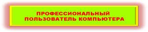 Кнопка-ППК-300-66