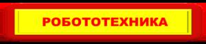 Кнопка-Робототехника-300-66-2-300x66
